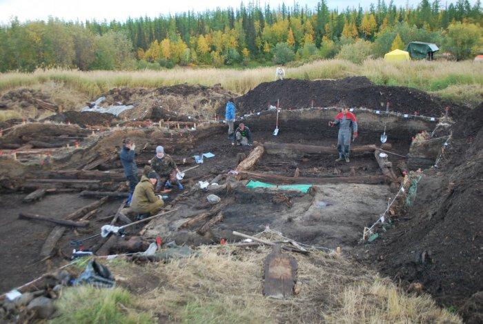 Археологи работают в древнем городище. /Фото:vesti.ru