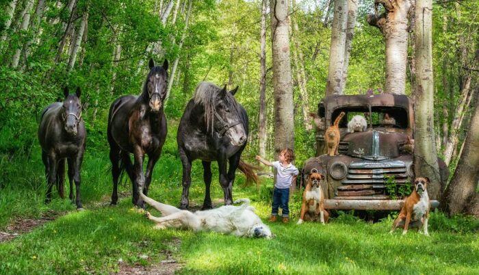Большая фермерская семья.