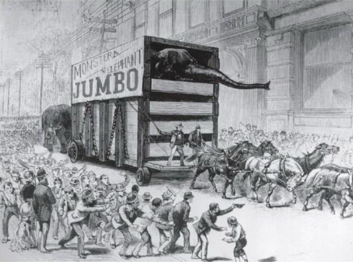 Парад-шествие в честь Джамбо на Бродвее. Иллюстрация в американском журнале.