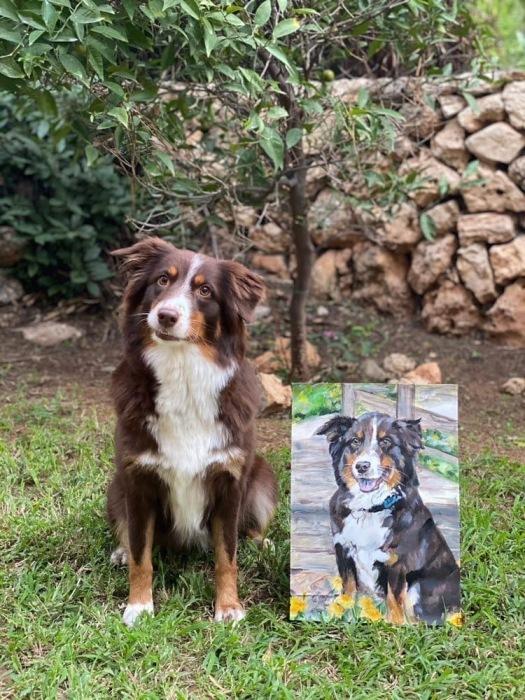 Милые портреты нравятся владельцам кошек и собак.
