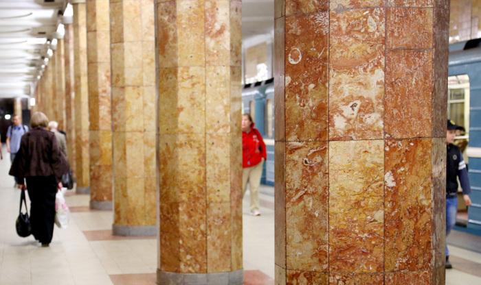 Колонны «Красносельской» можно рассматривать часами, выискивая доисторических беспозвоночных. /Фото:mos.ru