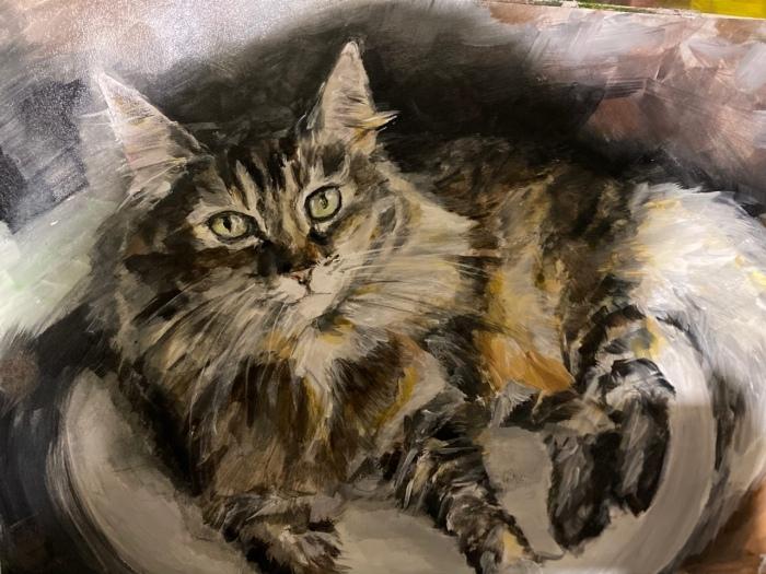 Портрет кота Джо.