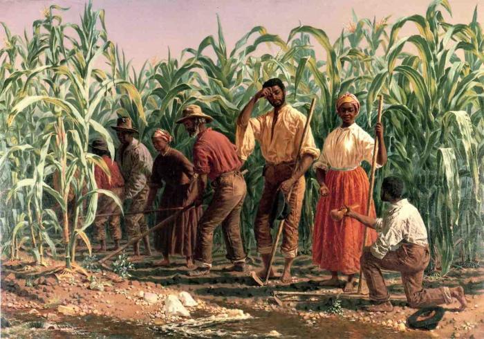 У третьего президента США и его молодой жены были десятки рабов.