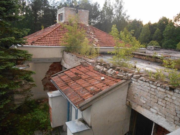 Здесь деревья прорастают сквозь крыши. /Фото:.drive2.ru