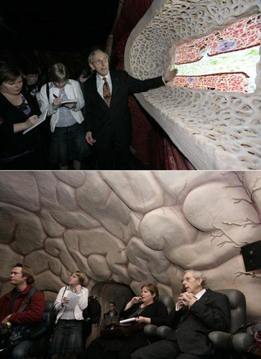 Любители острых ощущений в восторге от реалистичного путешествия по организму человека. /Фото:newsby.org