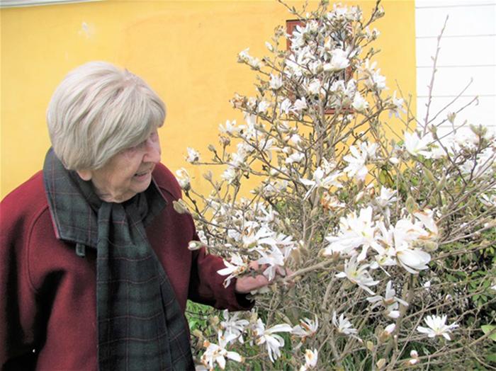 Блог бабушки изобилует фотографиями цветов и кустарников.