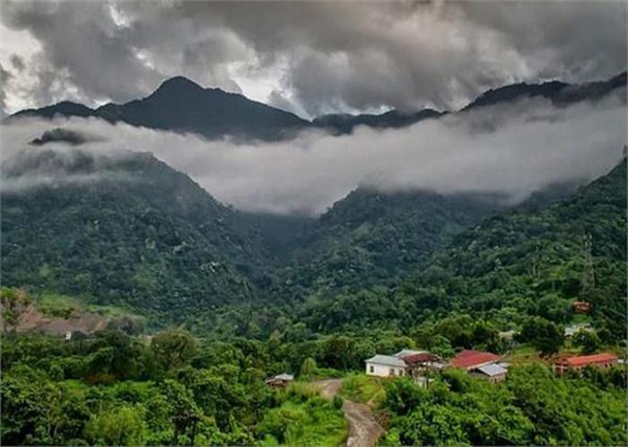 В долину слетаются только птицы, живущие в прилегающих лесах, но не перелетные и не деревенские. /Фото:punjabkesari.in