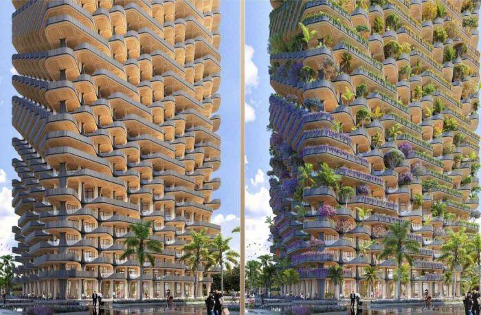 Балконы до посадки растений и после.