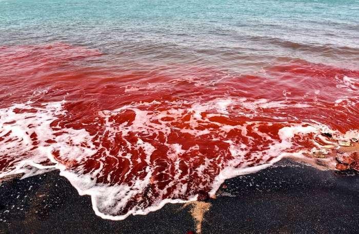 Красные волны словно кровоточат. /Фото:iranroute.com