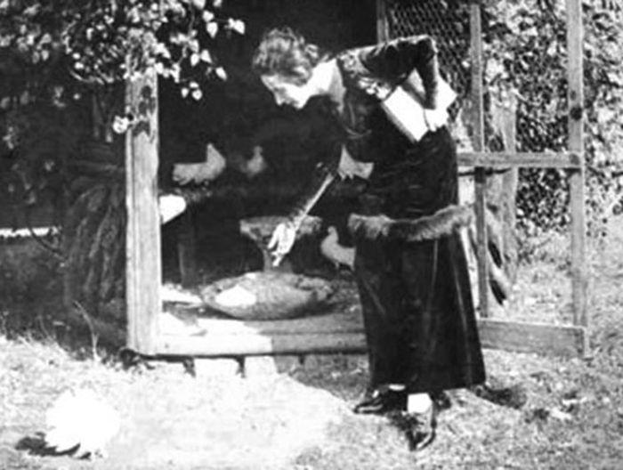 Анна Павлова и голуби.
