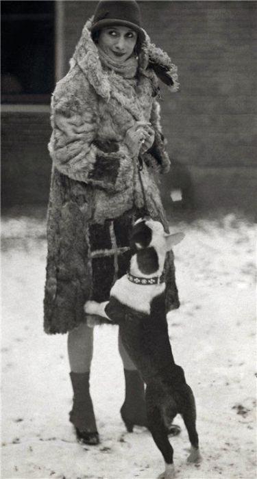 Павлова очень любила бульдогов.
