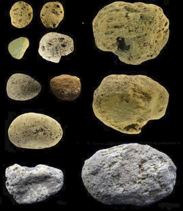 Найденные в гроте куски вулканической пемзы, предположительно, использовались для шлифовки орудий. /Фото:plos.org