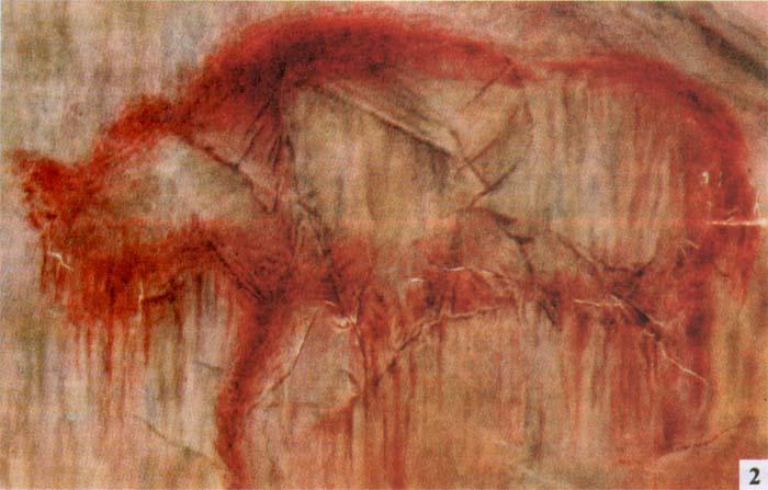 Изображение древнего единорога, найденное в пещере Шульган-Таш (Каповой), 1965. /Фото:old.evolbiol.ru