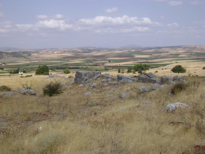Руины античного города Платеи