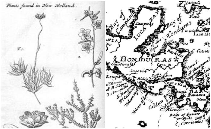Во время плавания Дампир составлял карты и делал зарисовки