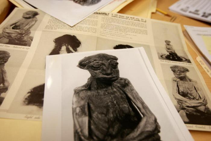 Ученые продолжают изучение мумии исходя из сохранившихся записей рентгенологического исследования