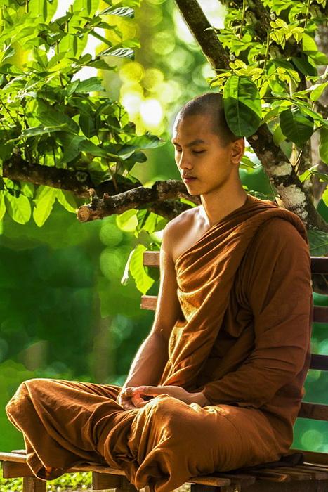 Монахи в буддизме обривают волосы в знак отказа от прошлой жизни