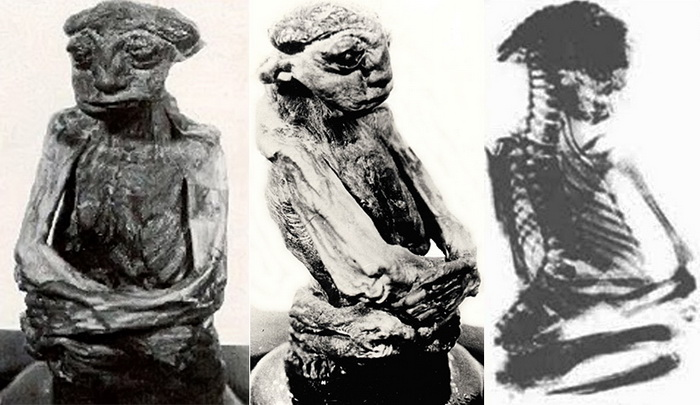 Исследования 1950 года установили, что мумия настоящая