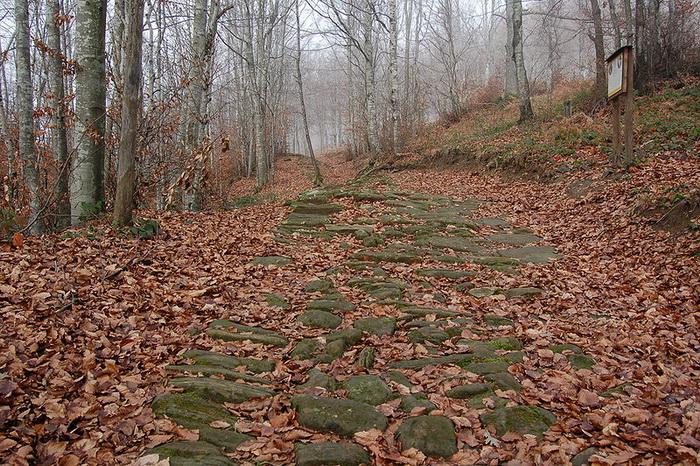 Историки продолжают открывать все новые фрагменты римских дорог - в первую очередь проводя поиски вблизи городов