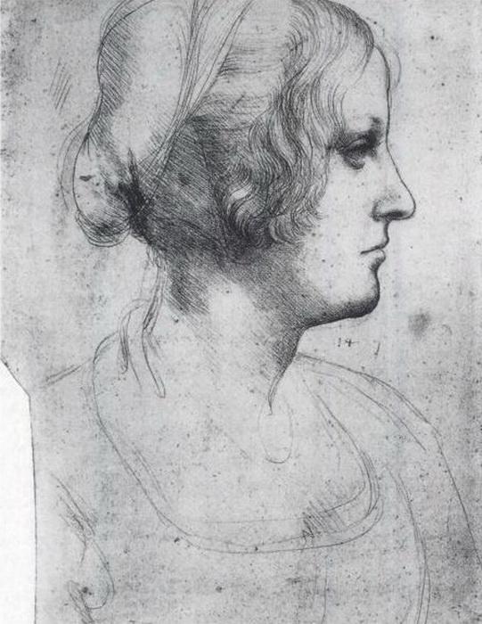 Между одним из рисунков Леонардо и «Портретом Бьянки Сфорца» прослеживается явное сходство