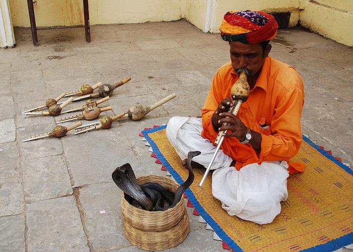 Индийские йоги, факиры, заклинатели змей владели искусством гипноза с древних времен