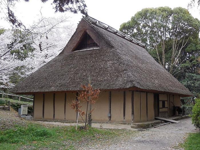 В наши дни традиционный японский дом можно увидеть в сельской местности