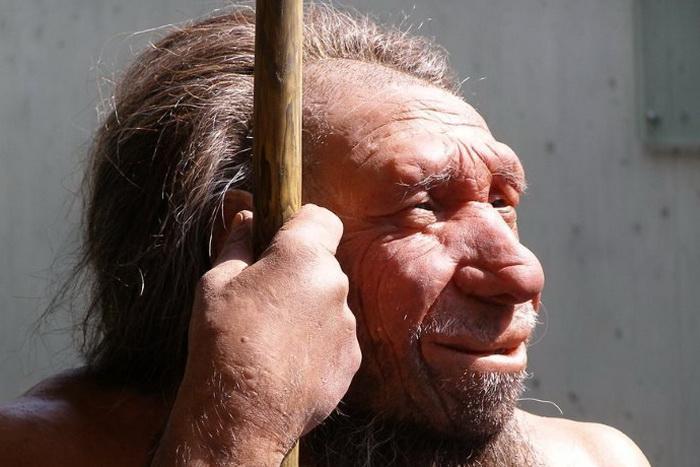 Неандерталец, реконструкция облика
