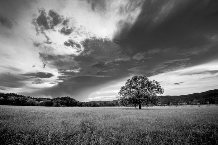 Черно-белый формат фотографии не мешает видеть пейзажи Адамса во всем их великолепии