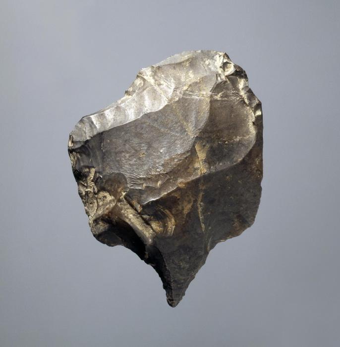 Этому каменному инструменту больше двадцати тысяч лет