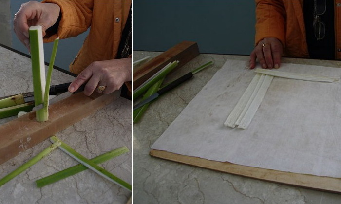 Демонстрация процесса изготовления папирусного листа в Музее папируса в Сиракузах