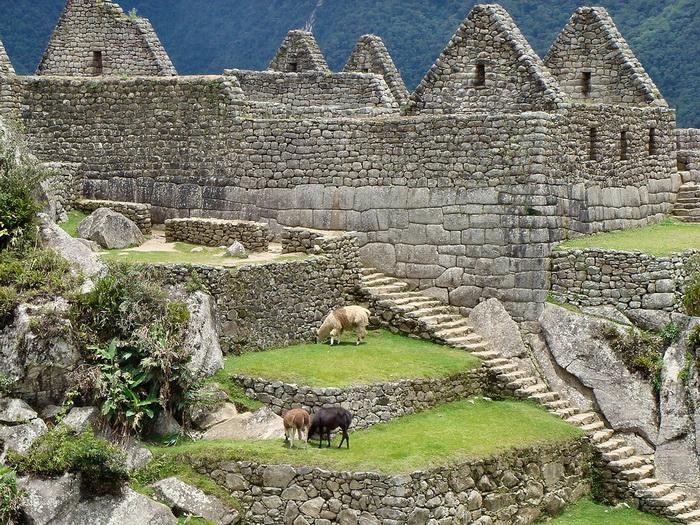 Земледелие индейцев Южной Америки было развито: успех связывали с милостью Солнечного божества