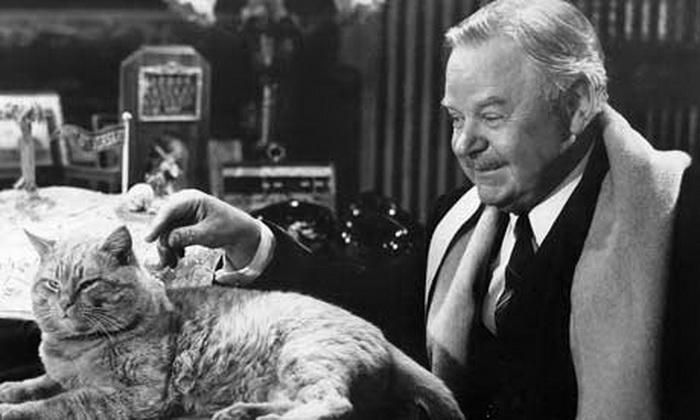По разным данным, в фильме снималось от 20 до 36 кошек; во время съемок все животные находились под наблюдением ветеринара
