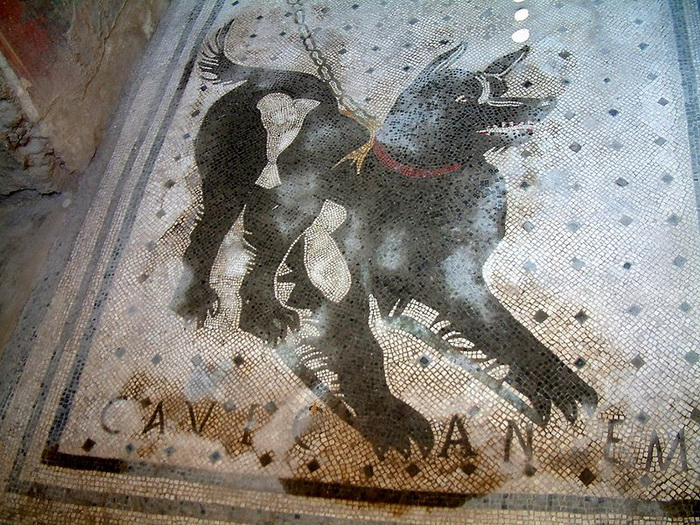 У порога римских вилл часто размещали мозаичную собаку