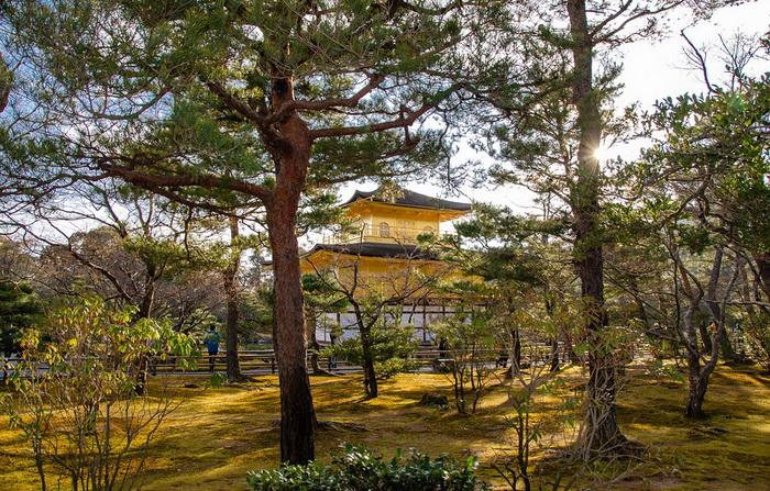 Кинкаку-дзи, один из буддистских храмов Киото. Источник: pixabay.com