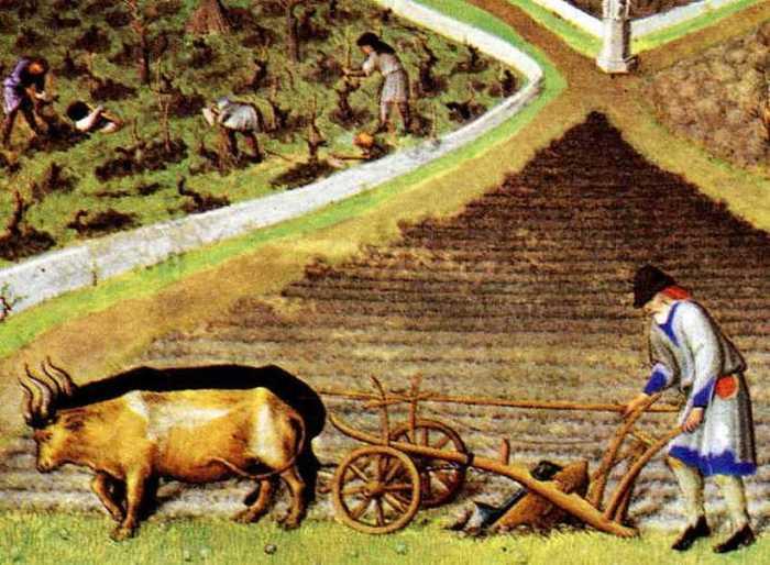 Так выглядела деревенская жизнь в Англии XII века