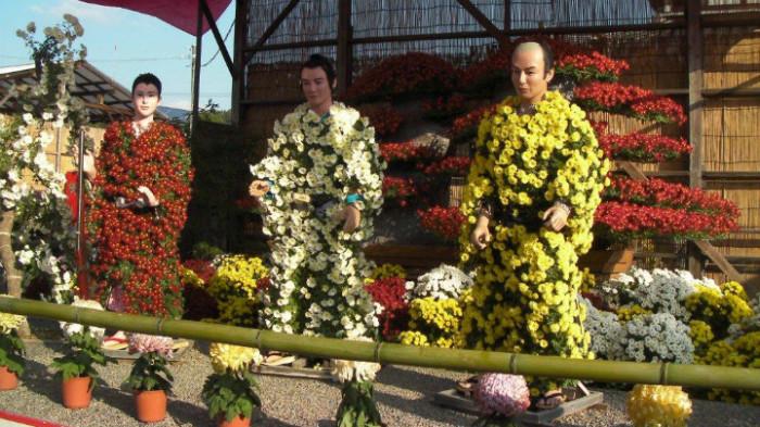 Цветы для нингё осторожно выкапывают, корни заворачивают во влажный мох