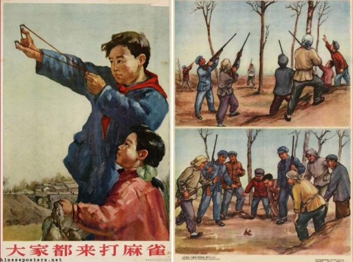 Плакаты «Все на борьбу с воробьями!», Китай, 1956 год