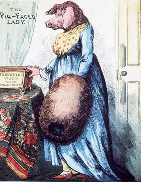 «Свинорылая дама». Эстамп, прилагавшийся к выпуску еженедельной лондонской газеты «The Illustrated Police News» от 7 января 1882 года