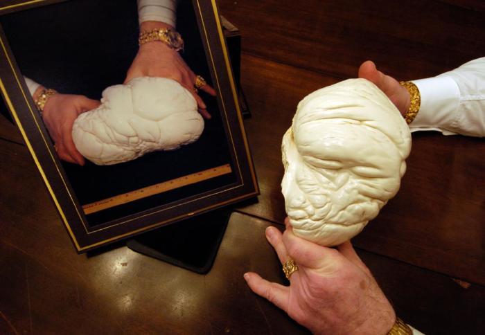Жемчужина Аллаха получила свое название из-за сходства с головой человека в чалме