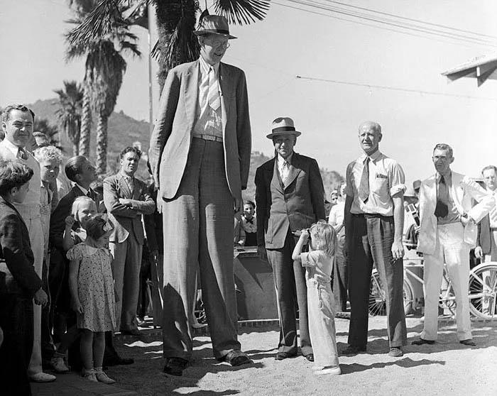 Роберт Уодлоу – самый высокий человек в истории