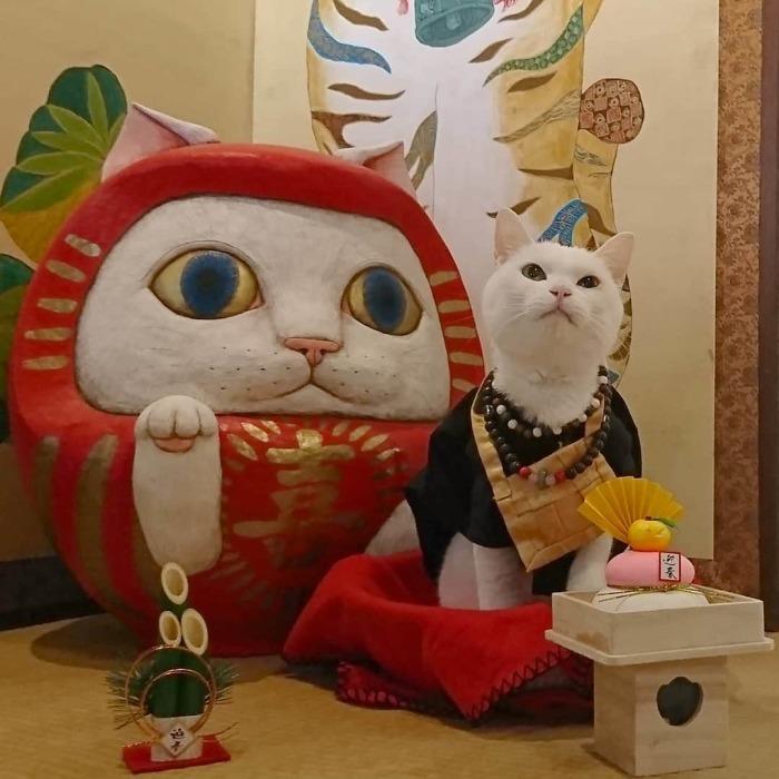 Храм кошек в Японии – новая святыня