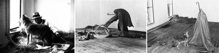 Йозеф Бойс, акция «Койот: я люблю Америку и Америка любит меня», 1974 год