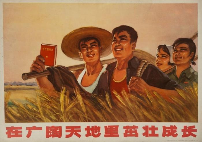 Плакат «Под общим небом и на общей земле», Китай, 1970-е гг