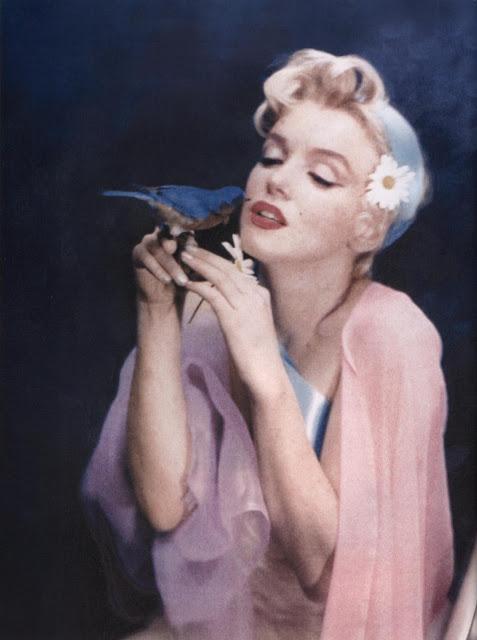 «Мисс Мэрилин Монро была похожа на расцветающий букет фейерверка, вызывающий у восхищенных зрителей благоговейное О-О-о-о-о-о-о. (…) И что бы ни зажгло фитиль, ее странный гений выдержал этот полет»