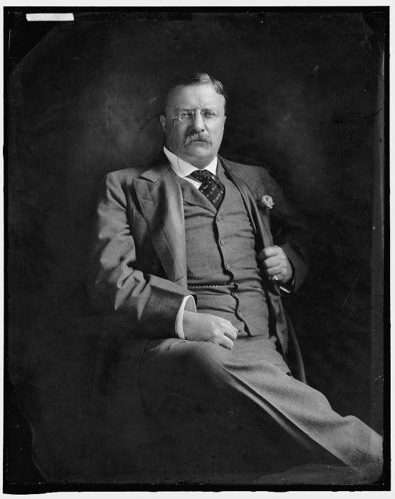 Фотопортрет Теодора Рузвельта, на который, возможно, опирался Маковский во время работы над полотном