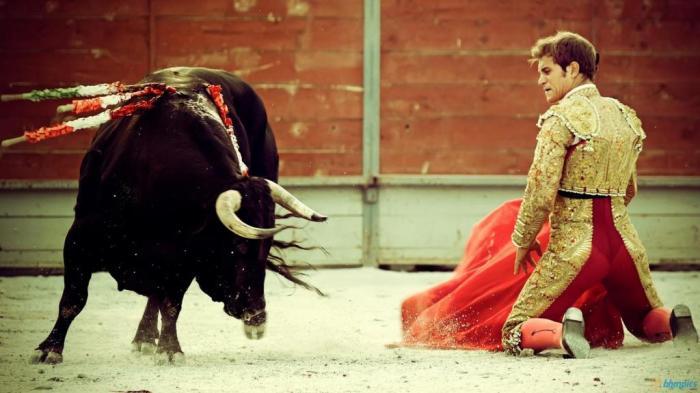 Коррида – это искусство противостояния человека и быка