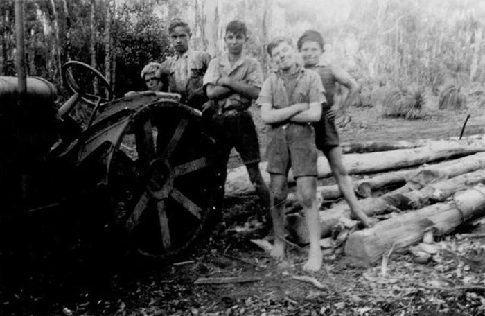 Дети-переселенцы работают на рубке леса, 1955 год, Австралия