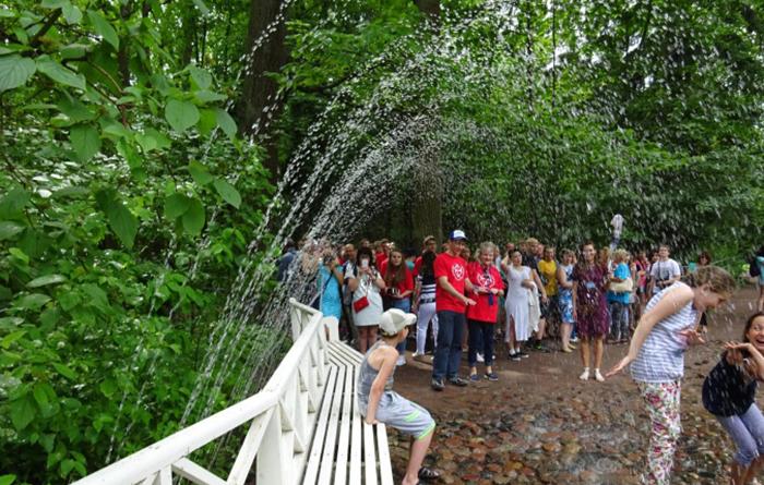 Шутиха у фонтана Дубок, Петергоф