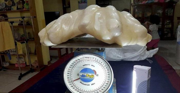 Вес нового рекордсмена среди жемчужин составляет 34 килограмма
