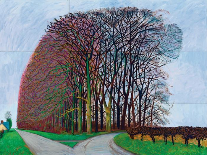 Большие деревья под Вартером, зима, 2007